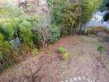 自慢の庭には好きな木々を植える余裕たっぷりの広さが。
