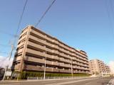 年明け早々にはこの道を舞台に箱根駅伝の熱き闘いが繰り広げられる。