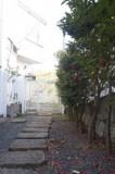 さざんかの植え込みがある玄関アプローチ。