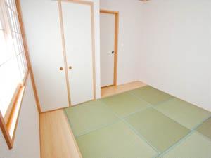 板畳が2カ所にあるので、家具やインテリアグリーンを置くスペースとしても。