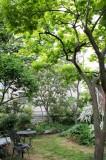 さまざまな木々が季節の移ろいを感じさせてくれる。