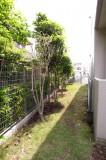 この庭を抜けると駐輪場が見えてくる。