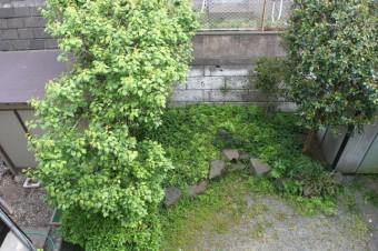 2階バルコニーから見下ろす庭