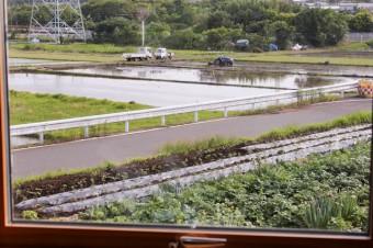 窓の外に広がるこの景色は、日本人の心の原風景。