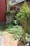 これぐらいの大きさの庭なら管理もラクラク。