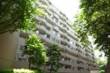 森を抜けたら白いマンション現れる、というイメージ。