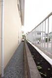 塀に沿って延々と続く花壇スペース、イイ!