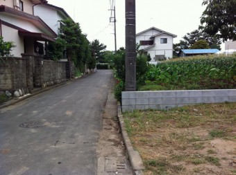 目の前の公道は幅約4メートル
