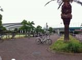 鵠沼運動公園は市民の憩いの場