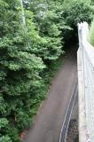 西側の道を挟んで鬱蒼とした森が広がる