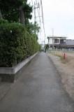 公道約3mを挟んである生け垣