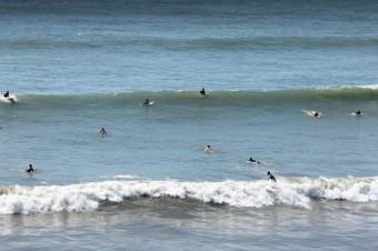 波の状態が一目瞭然。