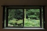 窓からの景色が緑一色というのが贅沢。