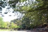 御幣公園を庭代わりに活用しちゃおう。