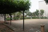 正面の公園