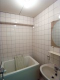 コンパクトなバスルーム。タイル使いがレトロ。