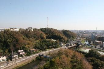 バルコニーからの緑豊かな眺望