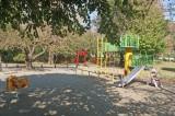 マンション敷地に隣接する柏山公園。遊具があるので小さな子を遊ばせるのに最適