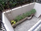 専用の庭には何を植えようか、夢が膨らみます。