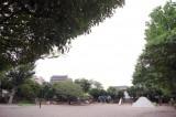 駅から近いのに、大きな公園があるってうれしい。